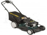 "MTD Yard-Man Select Series (21"") 160cc Self-Propelled RWD Lawn Mower"